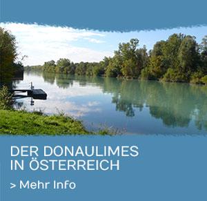 Der Donaulimes in Österreich
