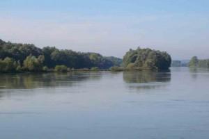 Donau bei Enns © Eva Kuttner