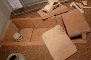 Ziegelplattengrab, Römermuseum Tulln © Eva Kuttner